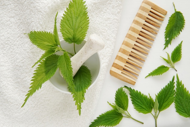 Natürliche frische brennnesselblätter, haarausfallbehandlung, alternativmedizin