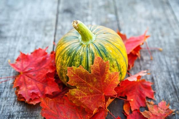 Natürliche herbstfallansicht kürbis- und ahornblätter auf hölzernem hintergrund. inspirierende oktober- oder september-tapete. wechsel der jahreszeiten, reifes bio-lebensmittelkonzept. halloween-party-erntedankfest.