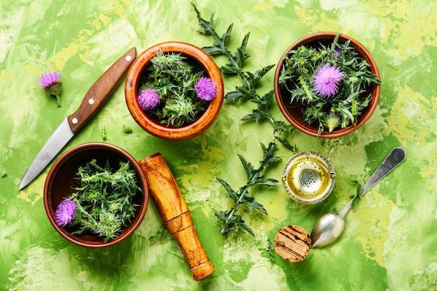 Natürliche kräutermedizin
