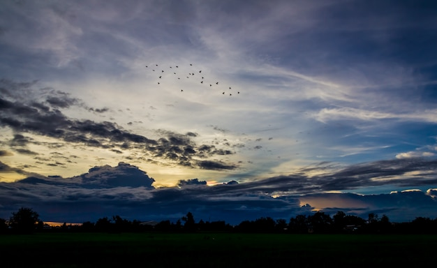 Natürliche muster, wolken am himmel