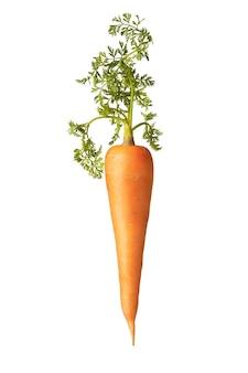 Natürliche organische vegetarische karottenfrucht mit grünem blatt auf weißem hintergrund, kopienraum. veganes konzept.