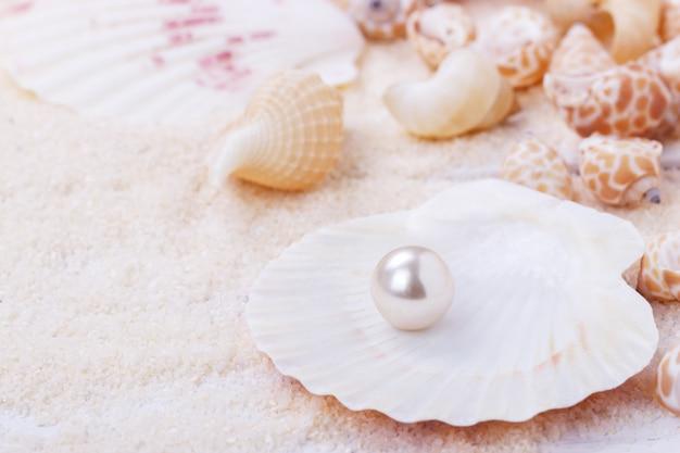 Natürliche perle in einer muschel