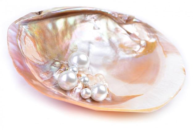 Natürliche perlen in der austernschale