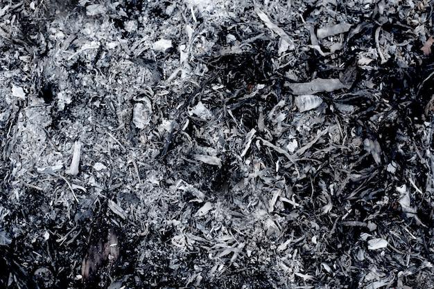 Natürliche pommes-aschebeschaffenheiten mit dunkler und grauer schwarzer beschaffenheit, gebrauch für hintergrundhintergrund