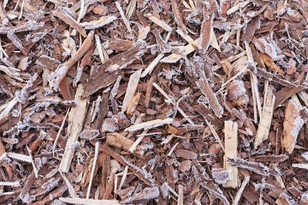 Natürliche rinde bedeckt von morgenfrost