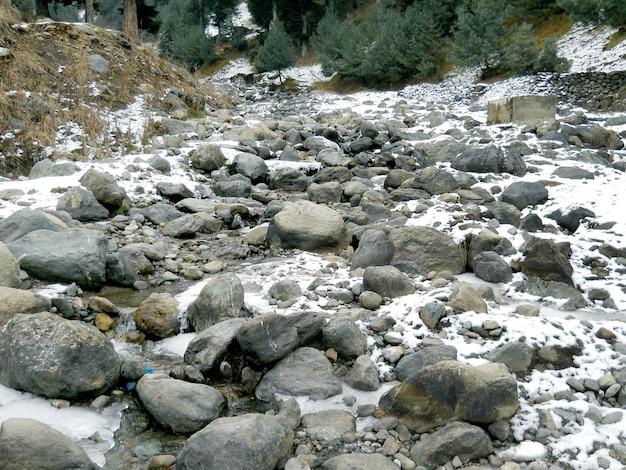 Natürliche szene des berges in shimla