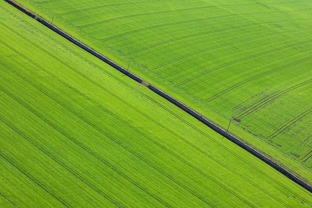 Natürliche textur und muster. landwirtschaftliche felder mit weizen und gerste von oben