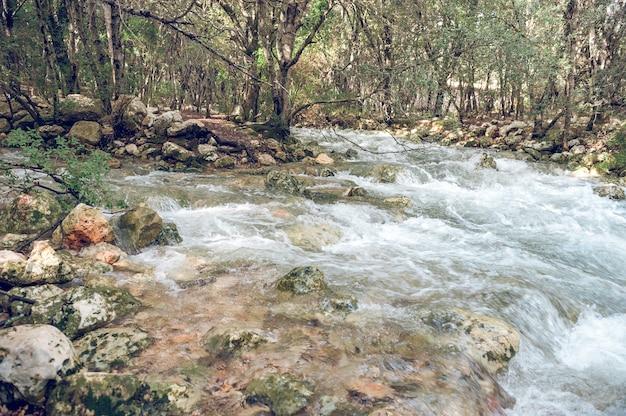 Natürliche wasserquelle mit intermittierenden aufschlüssen, die diffus sprießen