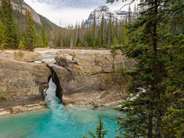Natürlicher brückenfelsentunnel in nationalpark yoho, britisch-columbia, kanada