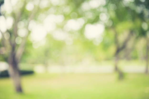Natürlicher grüner abstrakter hintergrund der unschärfe
