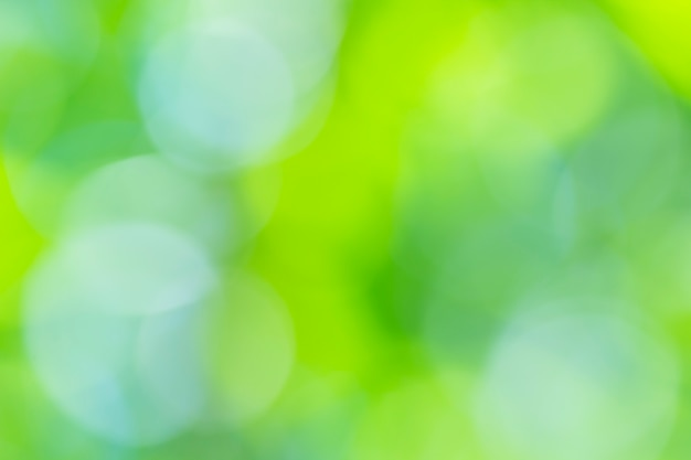 Natürlicher grüner unscharfer hintergrund