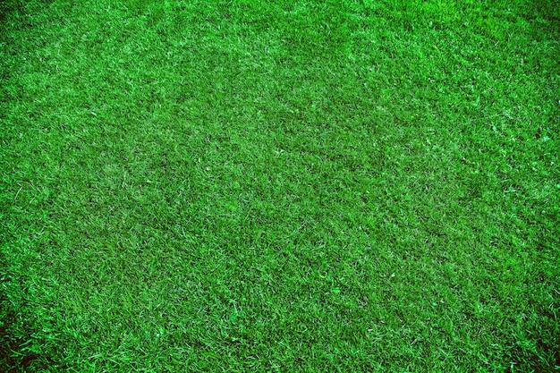 Natürlicher hintergrund des grünen grases. fußballfeld