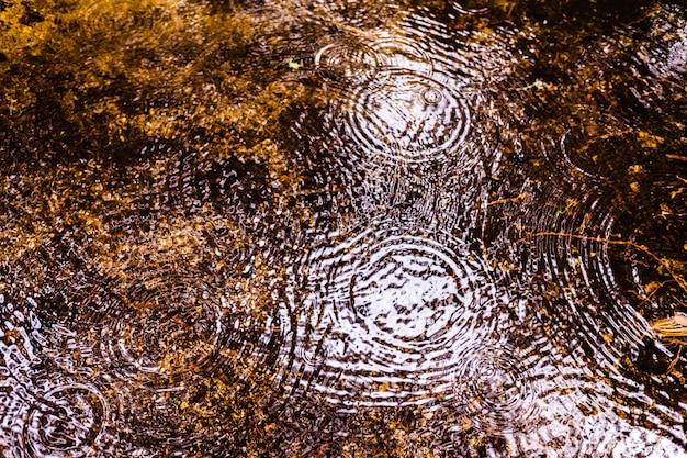 Natürlicher hintergrund mit der reflexion eines waldes in einem see während eines regens mit wellen von tropfen des wassers.