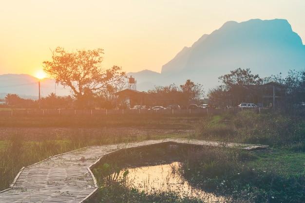 Natürlicher szenensonnenuntergang mit berg und baum, tropischer wald