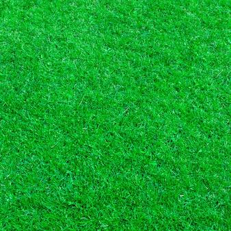 Natürlicher texturhintergrund des grünen grases