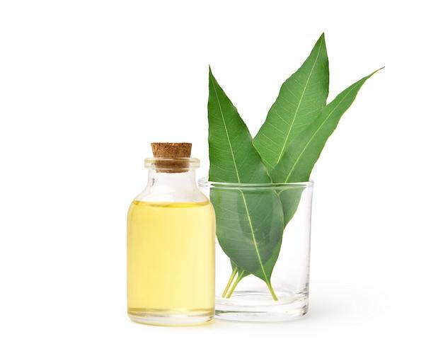 Natürliches ätherisches eukalyptusöl mit grünen blättern lokalisiert auf weiß.