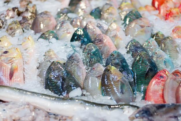 Natürliches frisch gefangenes sortiment von rohem ungekochtem seefisch auf einem gefrorenen marktschalter, kopierraum. delikatesse aus dem meer.