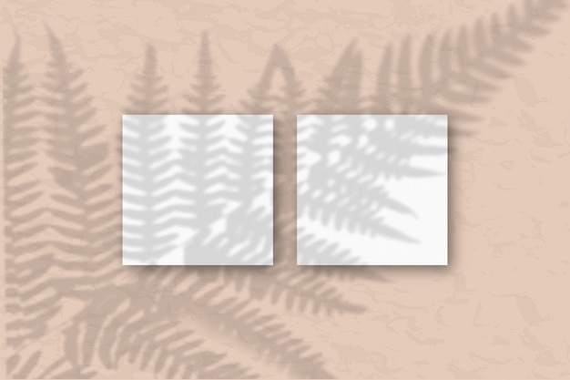 Natürliches licht wirft grasschatten auf 2 quadratische blätter weißes strukturiertes papier, das auf einem blauen hintergrund liegt