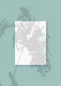 Natürliches licht wirft schatten von der pflanze auf ein vertikales blatt aus weißem strukturiertem papierformat, das auf einem grünen strukturierten hintergrund liegt. attrappe, lehrmodell, simulation.