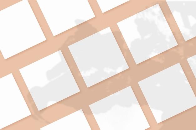 Natürliches licht wirft schatten von der pflanze auf mehrere quadratische weiße papierblätter, die auf einem beigen strukturierten hintergrund liegen. attrappe, lehrmodell, simulation.