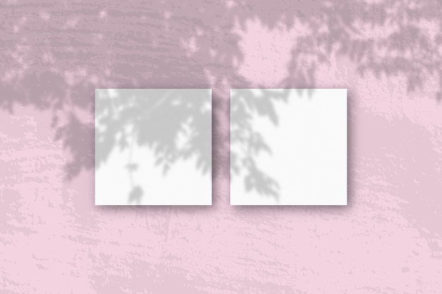Natürliches licht wirft schatten von einem apfelbaumzweig auf 2 quadratische blätter
