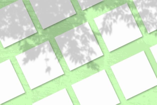 Natürliches licht wirft schatten von einem apfelbaumzweig auf mehrere quadratische blätter