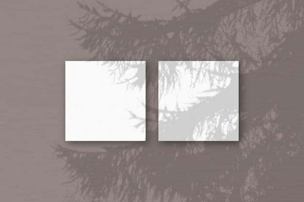 Natürliches licht wirft schatten von einem fichtenzweig auf 3 quadratische blätter weißen strukturierten papiers, die auf einem rosa hintergrund liegen