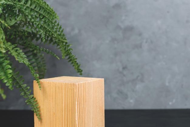 Natürliches modell von moos, holz, baumrinde und farn für kosmetik auf schwarzem und grauem hintergrund.