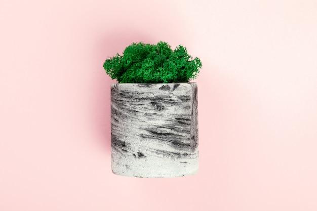 Natürliches moos stabilisiert grün