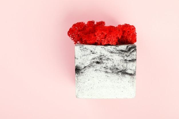 Natürliches moos stabilisiert rot. blume im topf. eco design interieur