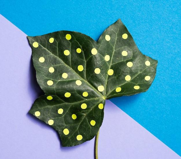 Natur-stilllebenkonzept des dotty blattes minimales