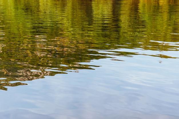 Naturblick auf den skadarsee in montenegro