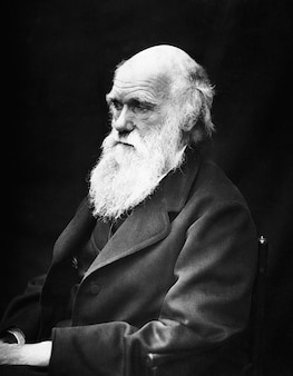 Naturforscher charles darwin robert wissenschaftlern