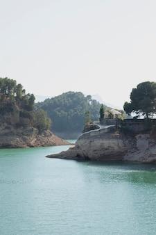 Naturlandschaft mit wasser und bäumen