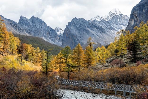 Naturlandschaftsbild, schnee-berg im yading daocheng, sichuan, china.