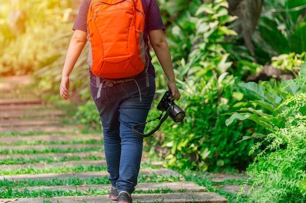 Naturphotograph, der mit kameragang im park geht, um insektensubjekt und forscher zu finden