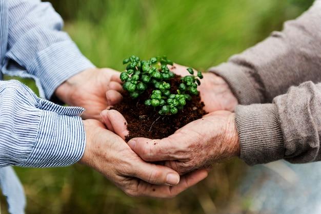 Naturschutz umwelt grüne natur ökologie