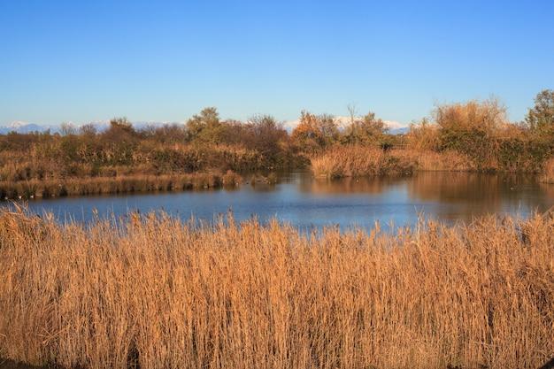 Naturschutzgebiet des valle canal novo