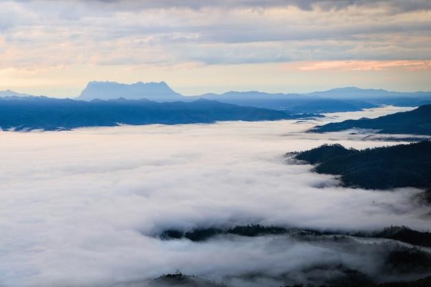 Nebel in den bergen. fantasie und naturlandschaft. natur konzeptionelles bild.