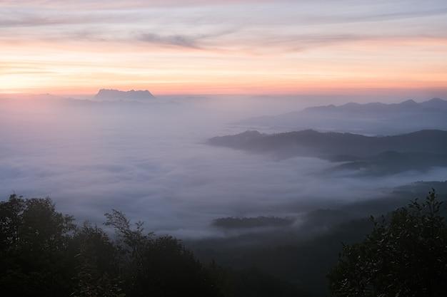 Nebel in den bergen. fantasie- und naturlandschaft. naturbegriffsbild.