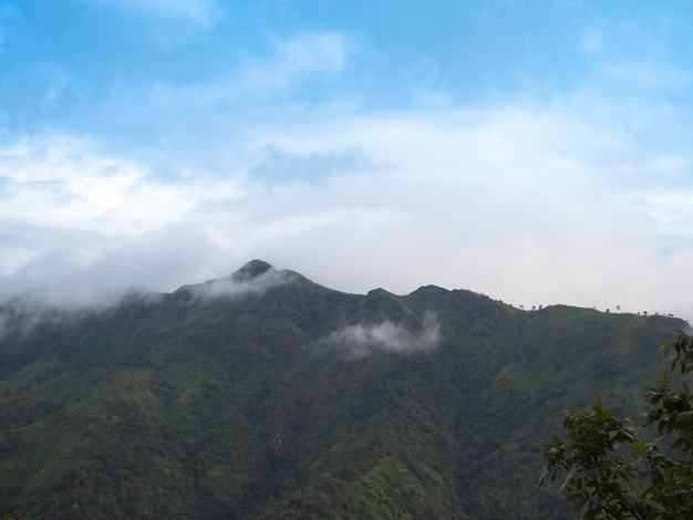Nebel und wolken über den bergen in der regenzeit bei thailand.