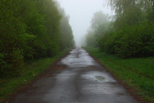 Nebelhafte straße im sommer