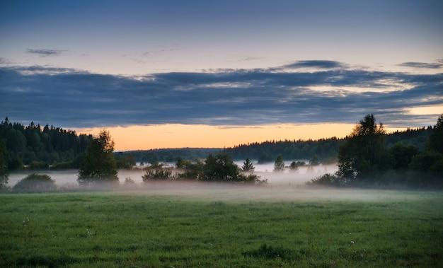 Nebeliges feld vor dem hintergrund von wald und bewölktem himmel bei sonnenuntergang ländliche landschaft