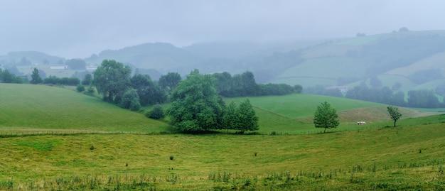 Nebellandschaft in der landschaft des französischen baskenlandes. frankreich