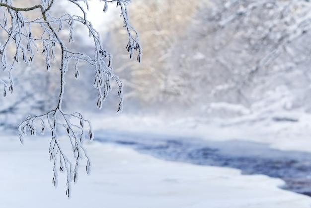Neblige winterlandschaft mit niedrigem morgensonnenschnee und teilweise eis auf einem schmalen fluss