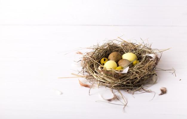 Nest mit farbigen ostereiern auf weißem holztisch