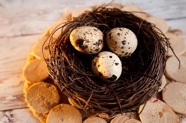 Nest mit wachteleiern auf einem küchentisch