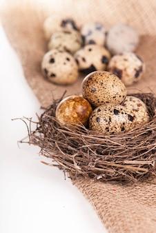 Nest mit wachteleiern auf einer leinwand, die vom weiß isoliert wird