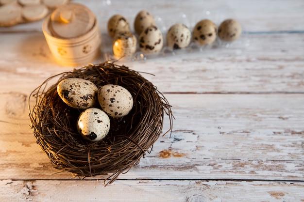 Nest mit wachteleiern
