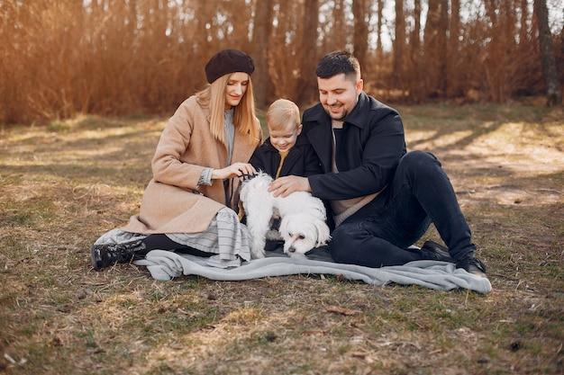 Nette familie, die in einem park spielt